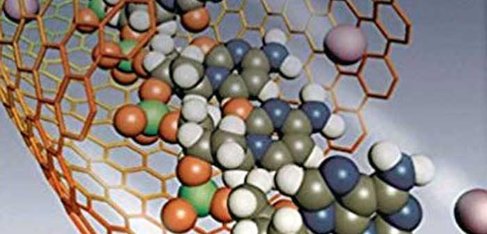 Humanos nas vertigens absorventesdo nanotécnico:um novo desafio!
