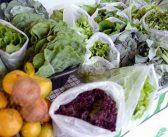 Minas Gerais tem nova lei que incentiva produção orgânica de alimentos