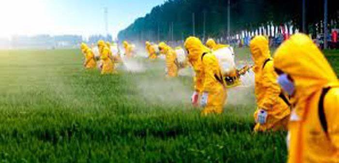 Mas, afinal, é possível eliminar resíduos de agrotóxicos da água e dos alimentos?
